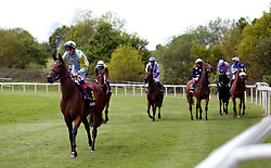 Tauteke ridden by jockey David Egan before the start of the RaceBets Money Back All Losers Oaks Trial Fillies' Stakes during the The Derby Trial Day at Lingfield Racecourse.