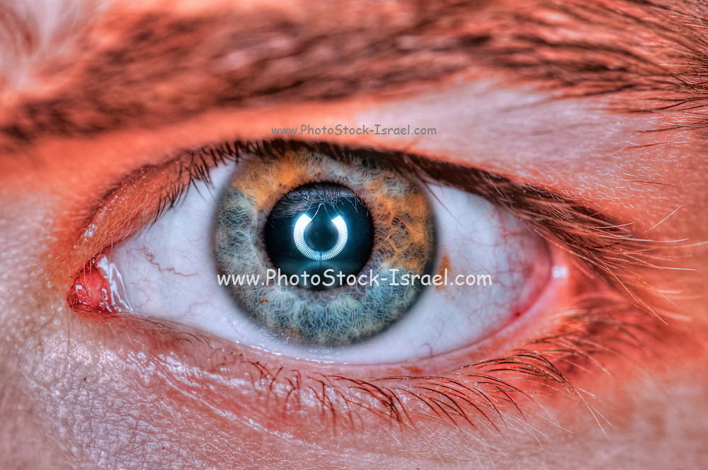 Extreme closeup of a human eye brown, and blue