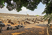 Israel, Sea of Galilee, The ruins of the fishing village at Capernaum