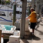 Vakantie Miami Amerika, vissersboten en het schoonmaken van gevangen vis in de haven van Key Largo Florida