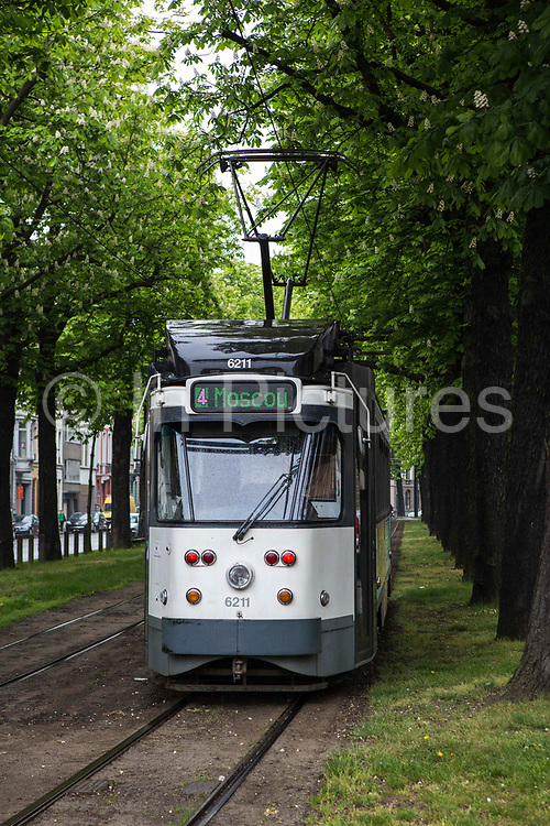 A Belgium tram travels through a green park on the Ghent tram network run by De Lijn Ghent city, Belgium.