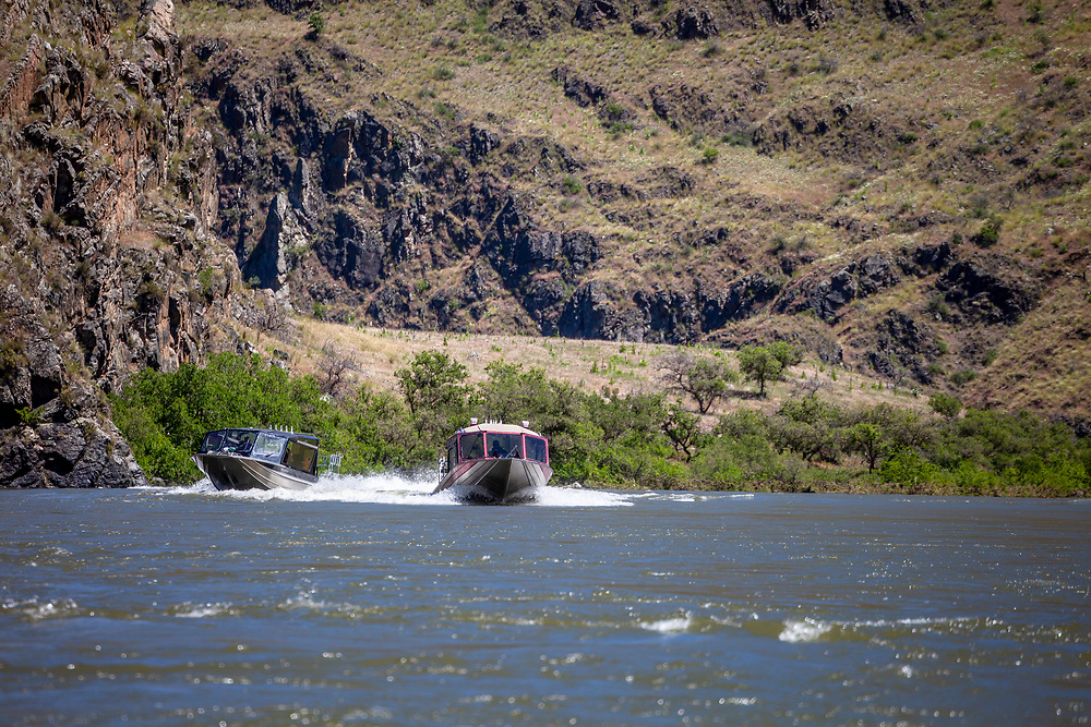 Two Jet Boats one blue and one red motor up river on the Snake River in Hells Canyon.  Licensing and Open Edition Prints.