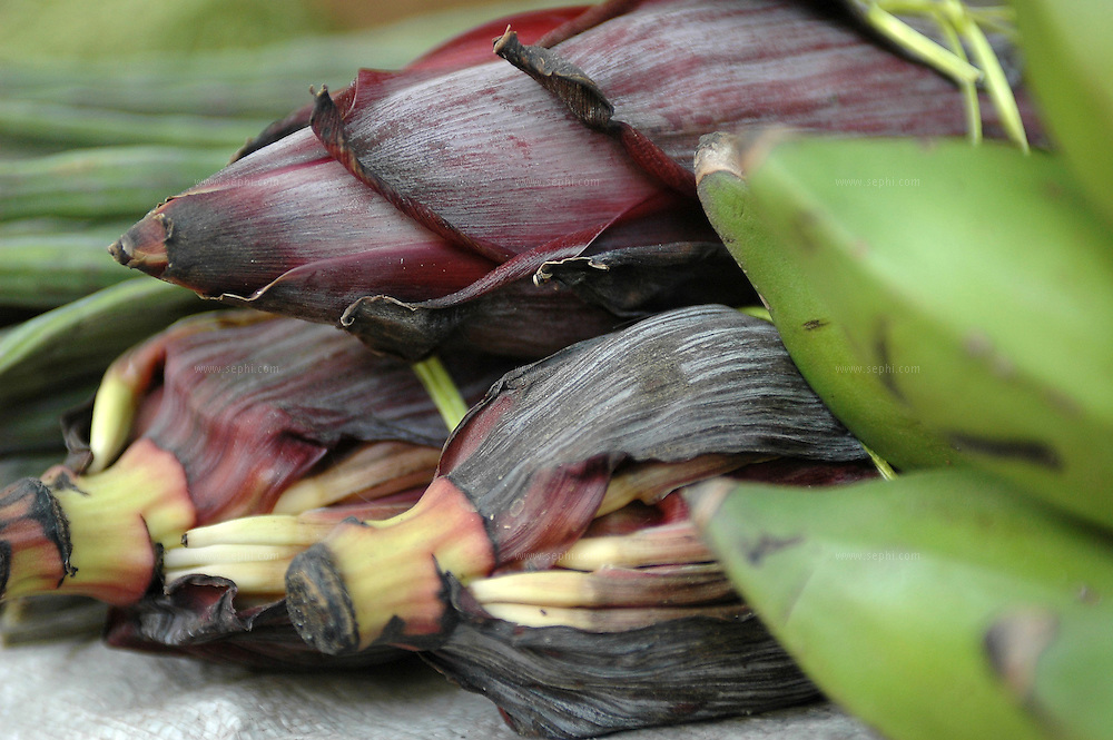 Banana or Plantain flower (kele kafool) is used as a vegetable is various methods of preperation all over south east asia. (Recipe of Plantain Flower with Spices availale upon request)