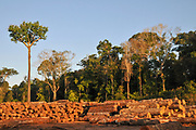 Logging activities in the Brazilian Rainforest causes large scale deforestation and land erosion