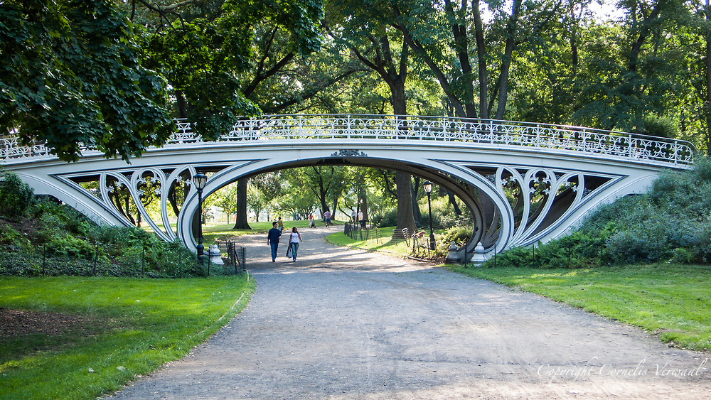 Gothic Bridge in Central park