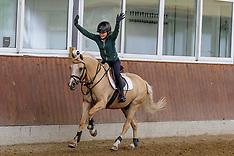 Balance auf dem Pferd