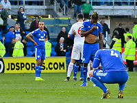 Football - 2018 / 2019 Premier League - Cardiff City vs. Crystal Palace<br /> <br /> Cardiff on their knees at the end of the game & being relegated , at Cardiff City Stadium.<br /> <br /> COLORSPORT/WINSTON BYNORTH