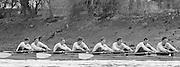 London. United Kingdom.  1987 Pre Fixture, Varsity Boat Race. National Squad vs Cambridge University BC on the Championship Course Mortlake to Putney. River Thames.  Saturday 21.03.1987<br /> <br /> [Mandatory Credit: Peter SPURRIER/Intersport images]<br /> <br /> CUBC.  Crew Bow. Ian CLARKE, Richard SPINK, Nicholas GRUNDY, Matt BRITTIN, Stephen PEEL [PRESIDENT] Jim PEW, Jim GARMAN, Paddy BROUGHTON and Cox. Julian WOLFSON 19870321 Pre Boat Race fixture, National Squard vs Cambridge UBC, London UK