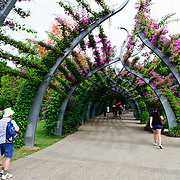 Walkway arches in Southbank parklands in Brisbane