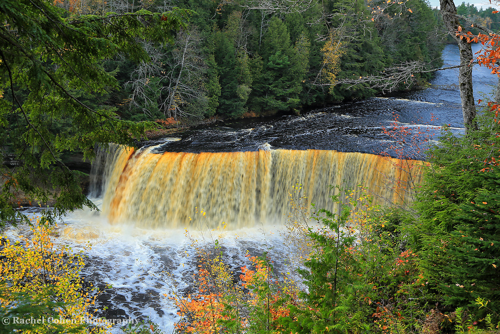 """""""Farewell to Fall""""<br /> <br /> As autumn foliage has peaked we can still enjoy the wonders and beauty of Tahquamenon Falls!!<br /> <br /> Waterfalls by Rachel Cohen"""