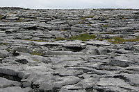 Limestone rock on Inis Oirr the Aran Islands Galway Ireland