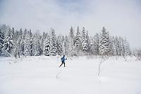A woman cross country skiing across an open meadow. Cabin Creek Snow Park, Washington Cascades, USA.