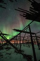 Northern Lights shine in sky above silhouette of cod drying racks, Flakstadøy, Lofoten Islands, Norway