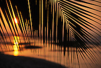 Sunset on the Kona coast of the Big island of Hawaii