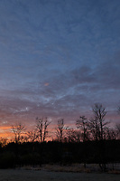 Autumn Backyard Sunrise Panorama. Seven of nine images taken with a Leica CL camera and 18 mm f/2.8 lens (ISO 200, 18 mm, f/11, 1/60 sec). Raw images processed with Capture One Pro and the composite created using AutoPano Giga Pro.
