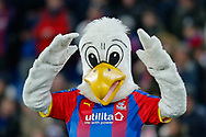 Pete the Eagle, the Crystal Palace mascot, during The FA Cup 3rd round match between Crystal Palace and Grimsby Town FC at Selhurst Park, London, England on 5 January 2019.