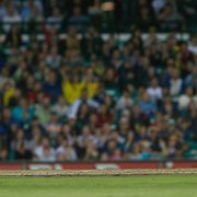 Australian wicket Keeper Brad Haddin runs out New Zealand batsman James Franklin during the Twenty20 International between Australia and New Zealand  at the Sydney Cricket Ground on the 15th February 2009. Australia won the thrilling match by one run. Photo Tim Clayton