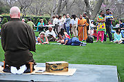ACTION during Hanami: Cherry Blossom Viewing and Japanese Music at the Arboretum in Dallas on Sunday, March 17, 2013. (Cooper Neill/The Dallas Morning News)