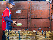 21 OCTOBER 2014 - BANGKOK, THAILAND:  A laborer sort and trims cabbage in the Pak Khlong Talat market on the Chao Phraya River in Bangkok.   PHOTO BY JACK KURTZ