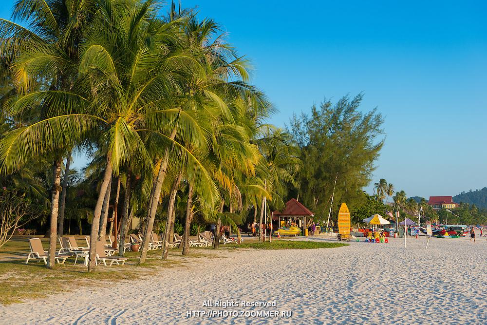Cenang beach palm trees at sunset, Langkawi, Malaysia