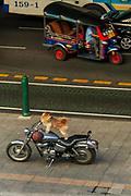 Dog guarding a Harley Davidson motorcycle, Siam Paragon shopping mall