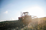 A farmer is seen driving a tractor to get their fields ready for next year's harvest. After they ploughed their fields on Saturday, Oct 11, 2008 - now they are setting crops like wheat, which will be expected to make foods for us like bread. (Photo by Vudi Xhymshiti)
