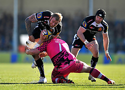 Damian Welch of Exeter Chiefs takes on the London Welsh defence - Photo mandatory by-line: Patrick Khachfe/JMP - Mobile: 07966 386802 07/03/2015 - SPORT - RUGBY UNION - Exeter - Sandy Park - Exeter Chiefs v London Welsh - Aviva Premiership