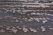 SNad bars at bottom of Jasper Lake (Athabasca River)<br />Jasper National Park<br />Alberta<br />Canada