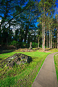 Path through the lava tree molds, Lava Tree State Monument, The Big Island, Hawaii USA