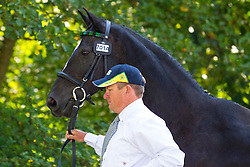 Boyd Exell, (AUS), Capone II, Curios, Rambo 395, Spitfire, Winston - Horse Inspection Driving - Alltech FEI World Equestrian Games™ 2014 - Normandy, France.<br /> © Hippo Foto Team - Leanjo de Koster<br /> 25/06/14