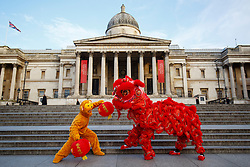 © Licensed to London News Pictures. 08/02/2016. London, UK. Chinese dancers from the London Chinatown Chinese Association posing at a photo call to welcome in the Year of the Monkey in Trafalgar Square, London on Monday, 8 February 2016. Photo credit: Tolga Akmen/LNP
