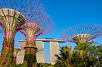 Singapour, Marina Bay, Garden By The Bay, le jardin botanique du Singapour 'vert', Supertree Grove // Singapore, Marina Bay, Garden By the bay, botanic garden, Supertree Grove