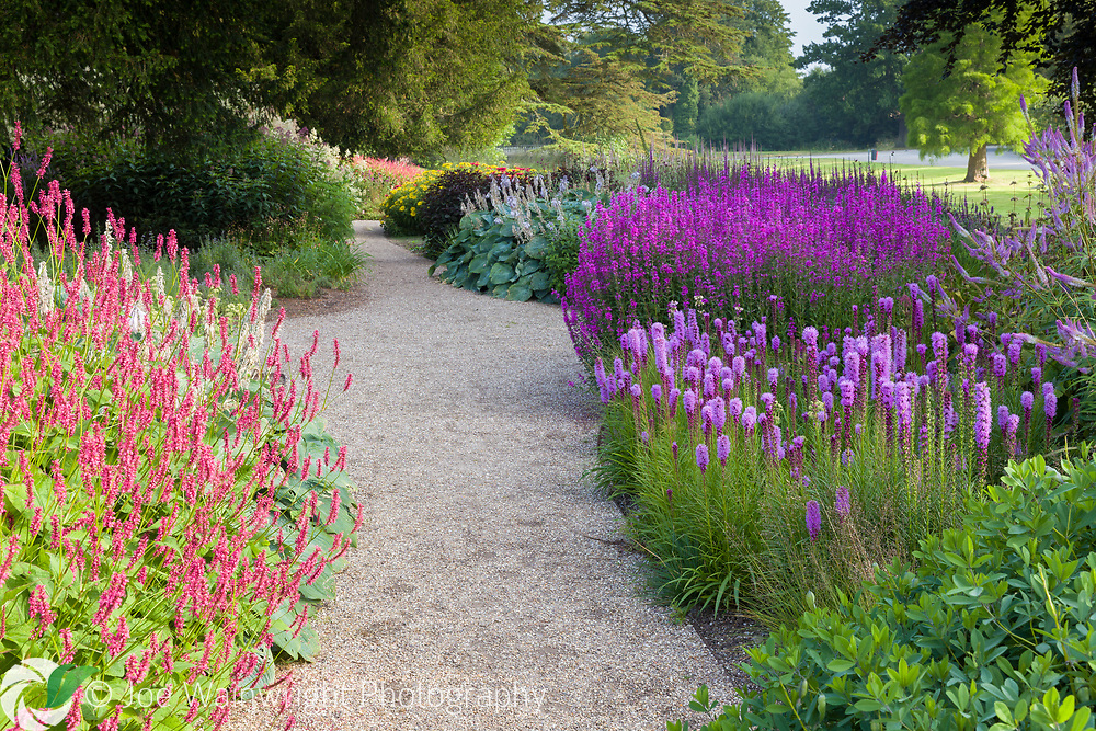 The Floral Labyrinth at Trentham Gardens, Staffordshire, designed by Piet Oudolf. This image is available for sale for editorial purposes, please contact me for more information.