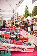 2012 Oregon Berry Festival in Portland, Oregon