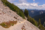 The trail hugs the southside of Burroughs Mountain.