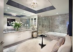 1881 Nash, Arlington, Virginia Turnberry Tower condominiums Master Bathroom