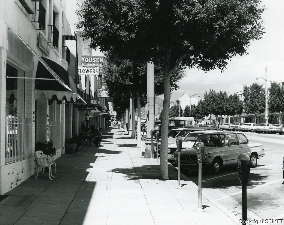 1977 Looking north up Larchmont Blvd.