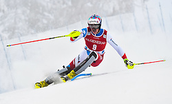 13.11.2016, Black Race Course, Levi, FIN, FIS Weltcup Ski Alpin, Levi, Salalom, Herren, 1. Lauf, im Bild Daniel Yule (SUI) // Daniel Yule of Switzerland in action during 1st run of mens Slalom of FIS ski alpine world cup at the Black Race Course in Levi, Finland on 2016/11/13. EXPA Pictures © 2016, PhotoCredit: EXPA/ Nisse Schmidt<br /> <br /> *****ATTENTION - OUT of SWE*****