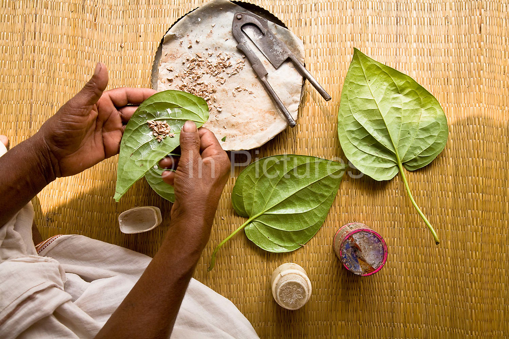 Indians a great connoisseurs of paan, a betel-leaf digestive which is ate by millions across the country, India