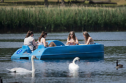 © Licensed to London News Pictures. 12/06/2021. London, UK. Members of the public relax in a pedlo on the Serpentine Lake in Hyde Park, central London on another hot summer's day. This weekend is expected to be the hottest of the year so far. Photo credit: Ben Cawthra/LNP