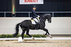 Minderhoud Hans Peter, NED, Glock's Taminau<br /> KWPN Hengstenkeuring 2021<br /> © Hippo Foto - Dirk Caremans<br />  06/02/2021