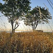 Ekstakusten på Gotland<br /> PHOTO © Bernt Lindgren