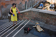 A dog owner and her two pet pugs with coloured leads who refuse to go any further while crossing a small bridge over a narrow canal in Dorsoduro, a district in Venice, Italy.