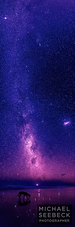 A vertical panoramic photograph of a dingo on the beach with the Milky Way and magellanic cloud visible, Fraser Island.<br /> <br /> Limited Edition Print