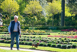 © Licensed to London News Pictures. 13/04/2014. London, UK . A man walks his dog through the formal garden. People enjoy the morning sunshine at Chiswick House in West London today 13th April 2014. Photo credit : Stephen Simpson/LNP