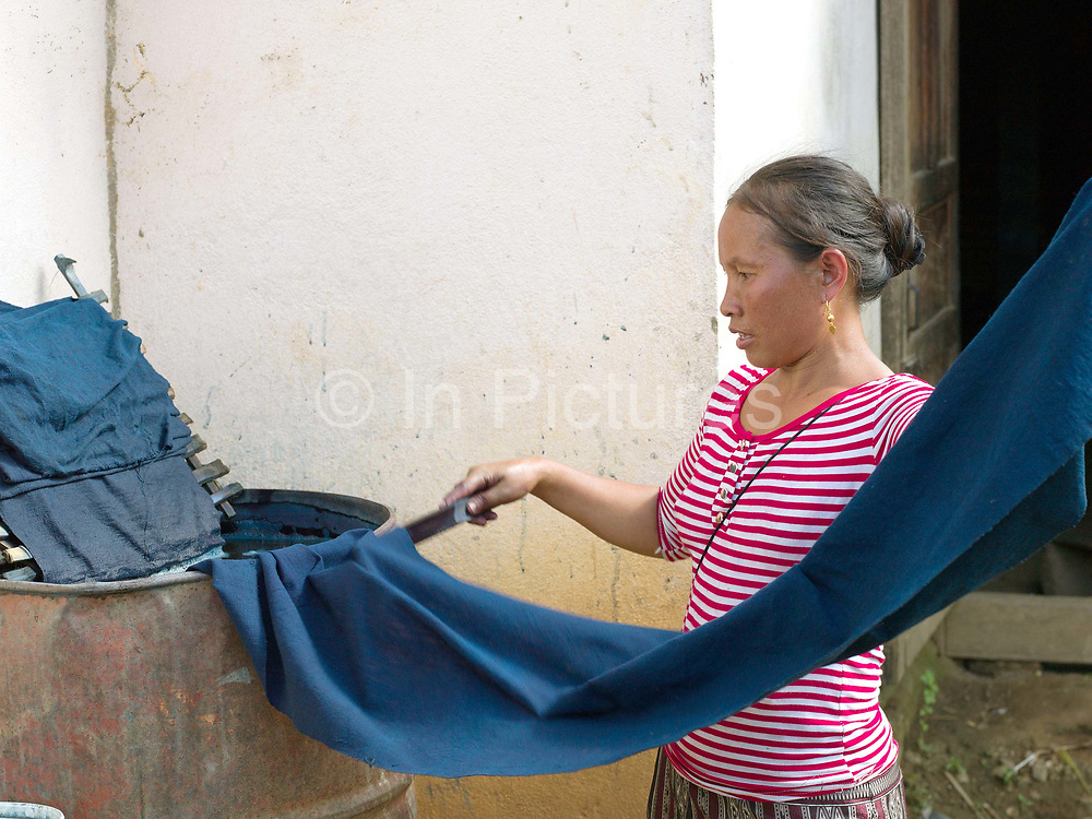 Meuay, a Iu Mien (Yao) ethnic minority woman dyeing cotton fabric with indigo dye, Ban Hom Phan, Houaphan province, Lao PDR. Meuay buys the cotton fabric from a nearby Tai Deng village and after dyeing the fabric many times to build up the colour to a dark blue/black she sells it to local Iu Mien women to make their traditional clothing. One of the most ethnically diverse countries in Southeast Asia, Laos has 49 officially recognised ethnic groups although there are many more self-identified and sub groups. These groups are distinguished by their own customs, beliefs and rituals.