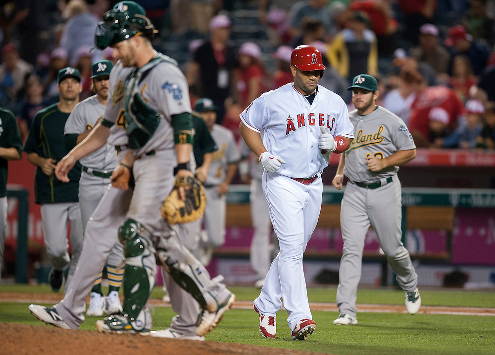 The Angels' Albert Pujols jogs to the dugout past the Oakland Athletics after grounding out for the last out of the game during the Angels' 7-4 loss at Angel Stadium on Friday.<br /> <br /> ///ADDITIONAL INFO:   <br /> <br /> angels.0625.kjs  ---  Photo by KEVIN SULLIVAN / Orange County Register  --  6/24/16<br /> <br /> The Los Angeles Angels take on the Oakland Athletics Friday at Angel Stadium.<br /> <br /> <br />  6/24/16