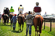 27 March 2010 : Runners leave the paddock for the Camden Plate Maiden Hurdle race at the Carolina Cup.
