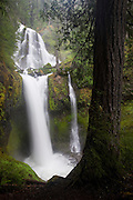 Falls Creek Falls, located in Skamania County, Washington, drops 207 feet in three tiers. The bottom two tiers are visible here.