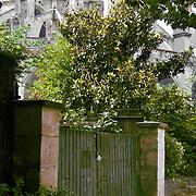 Notre Dame De Paris back Entrance Gates, Paris (France)